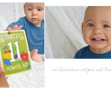 11 Monate Babyglück - Milestonecards