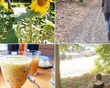 Der Monat August in Instagram-Bildern