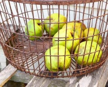 Der ultimative Tipp für eure Apfelernte - Äpfel aufsammeln leicht gemacht!