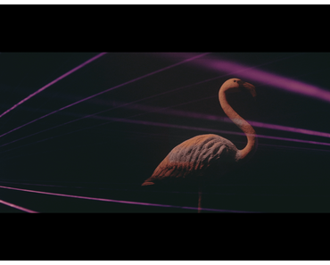 Videopremiere: Philipp Poisel – Erkläre mir die Liebe
