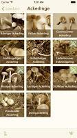 Die Pilz-App