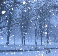 Die unpoetische Schneeflocke
