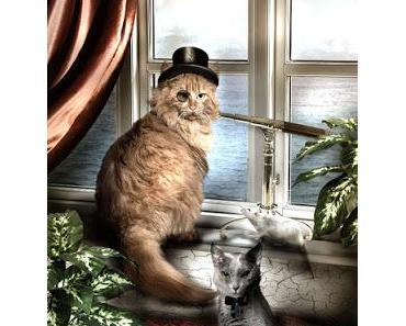 Mr. Pattapu, der Katzendetektiv - Ein Gespräch mit Carola Kickers