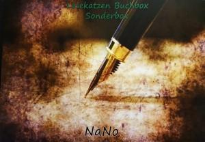 Unboxing: Lesekatzen Buchbox Sonderbox: NaNoWriMo