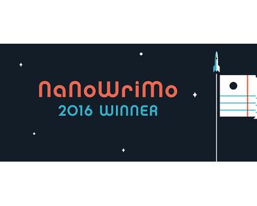 My first NaNoWriMo: 12 Dinge, die ich beim Schreiben meines ersten Buches gelernt habe
