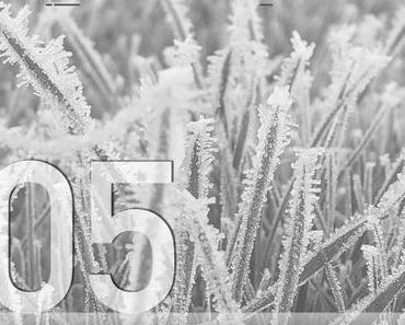 Adventskalender 2016 – Tag 05: KapUzi – Moving Out