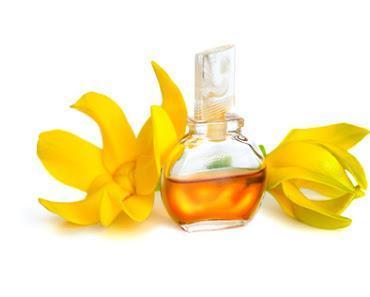 Weihnachtsgeschenk zum selber machen (2): einen wunderbar duftenden Parfum-Körperspray mit Ylang-Ylang