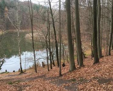 Baasee-Wanderung und Aufwärmen in der Waldschenke