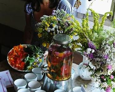 Kochen mit Wildkräutern&essbaren Blüten - Mein neues Kursangebot 2017