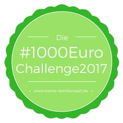 1000EuroChallenge2017 KW 2: wir treffen uns auf ebay und Co.