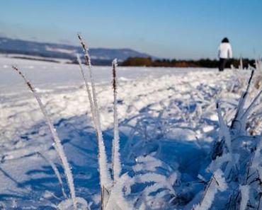 Winterwandern in der Metropolregion Nuernberg