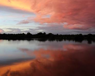 Namibia - Okavango River