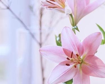 Friday-Flowerday 03/17
