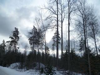 Klimaerwärmung hat Skandinavien fest im Griff