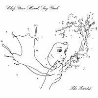 Clap Your Hands Say Yeah: Im Cockpit