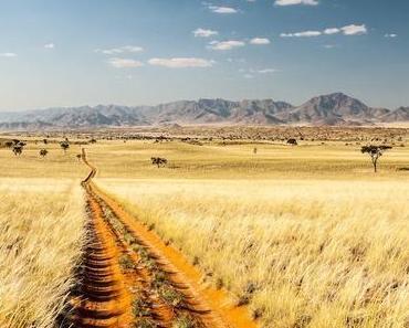 Namibia – Packliste 4×4 Camping Safari