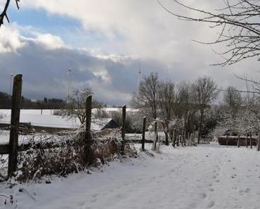 Traumschleife LandZeitTour – Über Quellgebiete, Moore und Stege