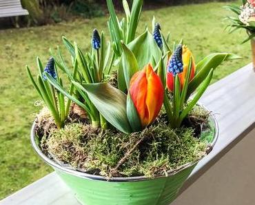 Tag der Floristik in den USA – der amerikanische National Floral Design Day