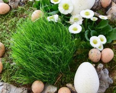 Von Frühling zu Ostern in wenigen Minuten