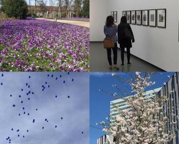 Von Fotos, Europa und schönen Highlights – oder – Ein Tag in Düsseldorf