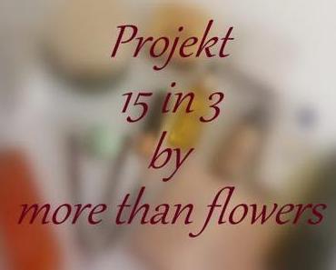 Projekt 15 in 3 by more than flowers [Zwischenbericht II]