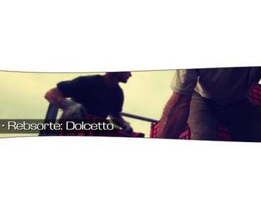Dolcetto – die Volkstraube (Teil 1 von 2)