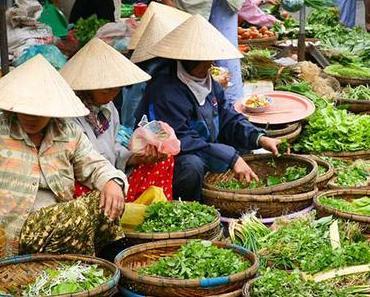 Die Vietnamesische Sprache