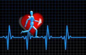 Bedeutet ein niedriger Ruhepuls eine gute Fitness?