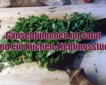 Gänseblümchen im Salat und ein Küchen-Lieblingsstück