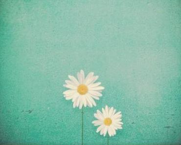 Give Away – Postkarten von Pickmotion