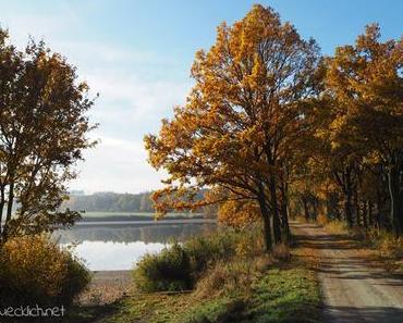 {Familienausflug} Naturpark Geras