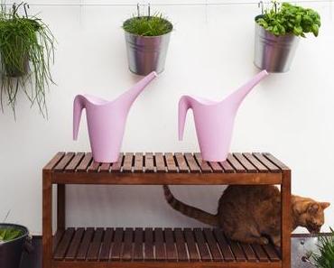 DIY Kräuterwand: Kräutergarten anlegen auf Balkon und Terrasse