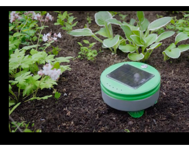 Kickstarter: Tertill – Dieser Roboter unterstützt im Kampf gegen Unkraut