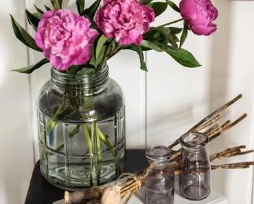 Rosafarbene Juli-Pfingstrosen