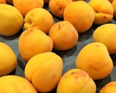 Aprikosen: Rezept-Ideen rund um das frühreife Früchtchen