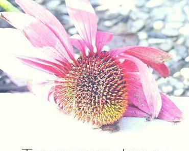 Trennungsschmerz: 5 Songs zum Trösten bei schwerem Liebeskummer
