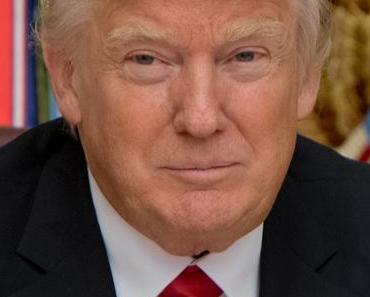 Trump und Putin zusammen gegen Wahlbeeinflussung