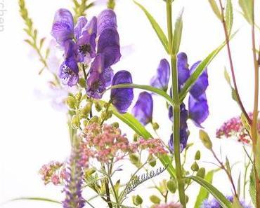 Friday-Flowerday 29/17