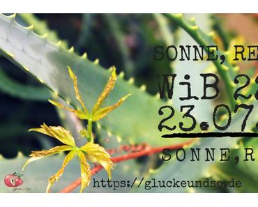 Sonne-Regen-Sonne-Regen-WiB 22.-23.07.17