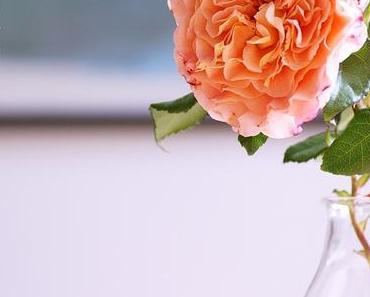 Friday-Flowerday 30/17