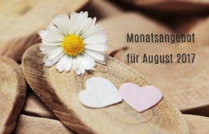 Angebot für den August 2017