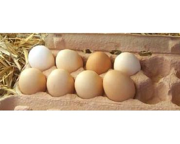Der Eier-Skandal und die Prüfnummern dazu