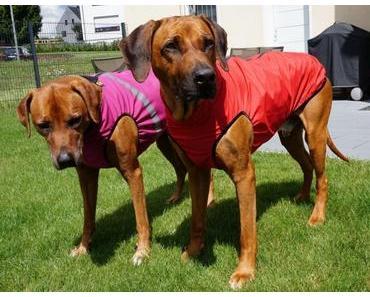Persönlich getestet: Regen- und Softshelljacke für Hunde