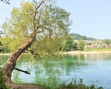After-Sommerferien-Programm: Zelten am Rhein