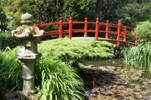 Japanische Gärten – Was gehört dazu?