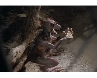 Zombie Horror #3 | BRAINDEAD (1992) von Peter Jackson