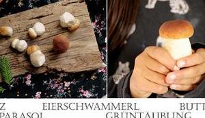 Pilze einfach glutenfrei