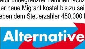 Warum Bundestagswahl letzte Chance? Dieser Artikel versucht nochmals Kurzform darzustellen