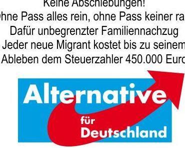 Warum ist bei der Bundestagswahl die AfD die letzte Chance? Dieser Artikel versucht es nochmals in Kurzform darzustellen