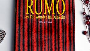 Rumo Wunder Dunkeln Walter Moers